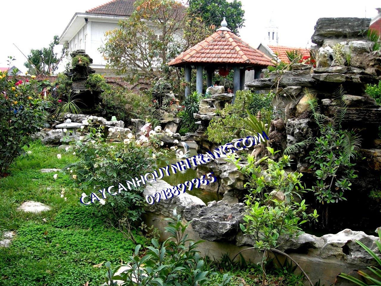 Dịch vụ chăm sóc cây xanh, sân vườn